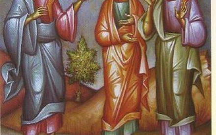 """""""حكمة الاسبوع :   """"رابي، أَنتَ ابنُ الله، أَنتَ مَلِكُ إِسرائيل"""